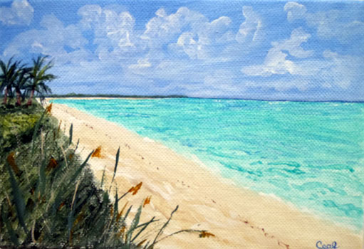 Ceal Swift Beach 3    acrylic, (sold with easel)	 7x5		 $70.00